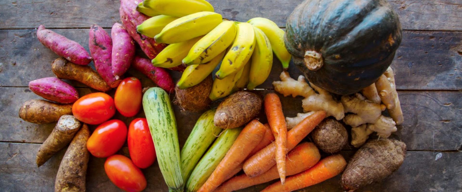 Hortaliças orgânicas que são ingredientes na cozinha da Orgânico Gourmet
